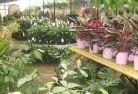 Adventure Bay Plant nursery 7